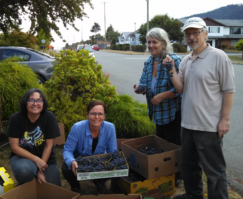 pICTURE OF GLEANERS AFTER A SUCCESSFUL HARVEST OF LOCAL FRUIT TREES